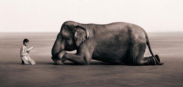 La-humildad-que-nace-del-corazón-3