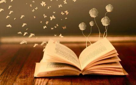 Qué es un Libro