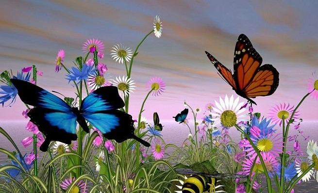 Los ricos no son mariposas…