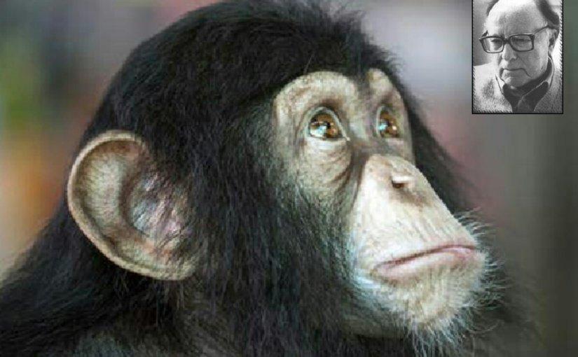 El mono quequiso…